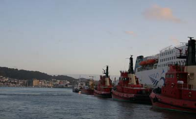 Tugboats at doorstep of Wellington apartment